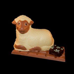 chocolade dieren
