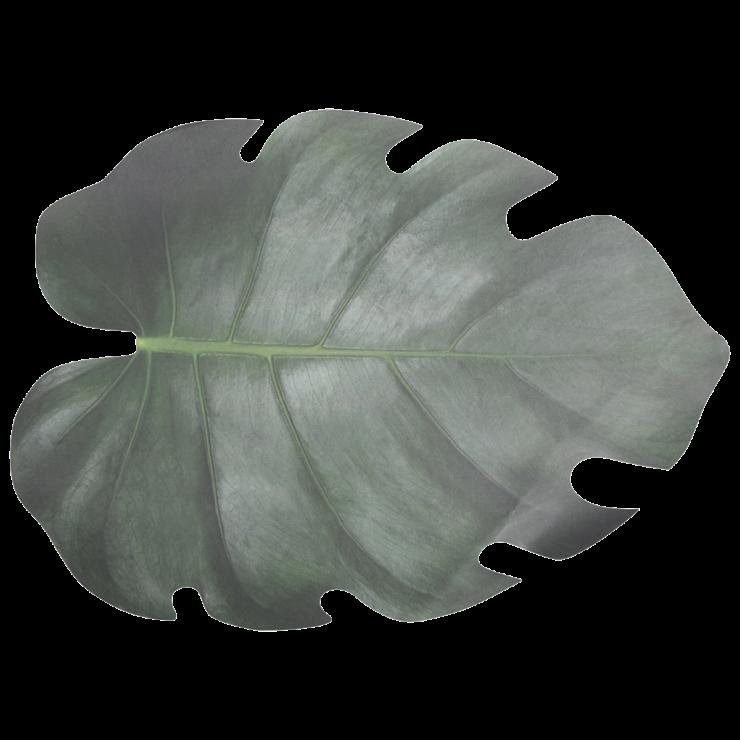 placemats bladvorm 2,95 10 st